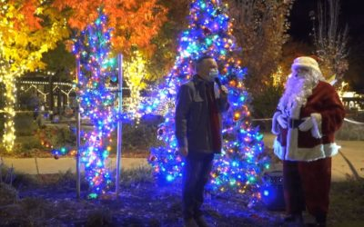 Enjoy The Yountville Holiday Lights Right From Your Home